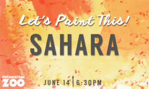 Let's Paint This Sahara