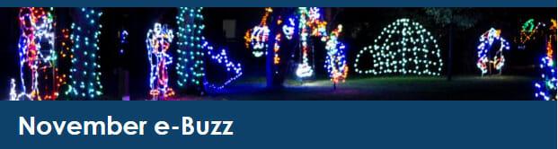 November Buzz Header
