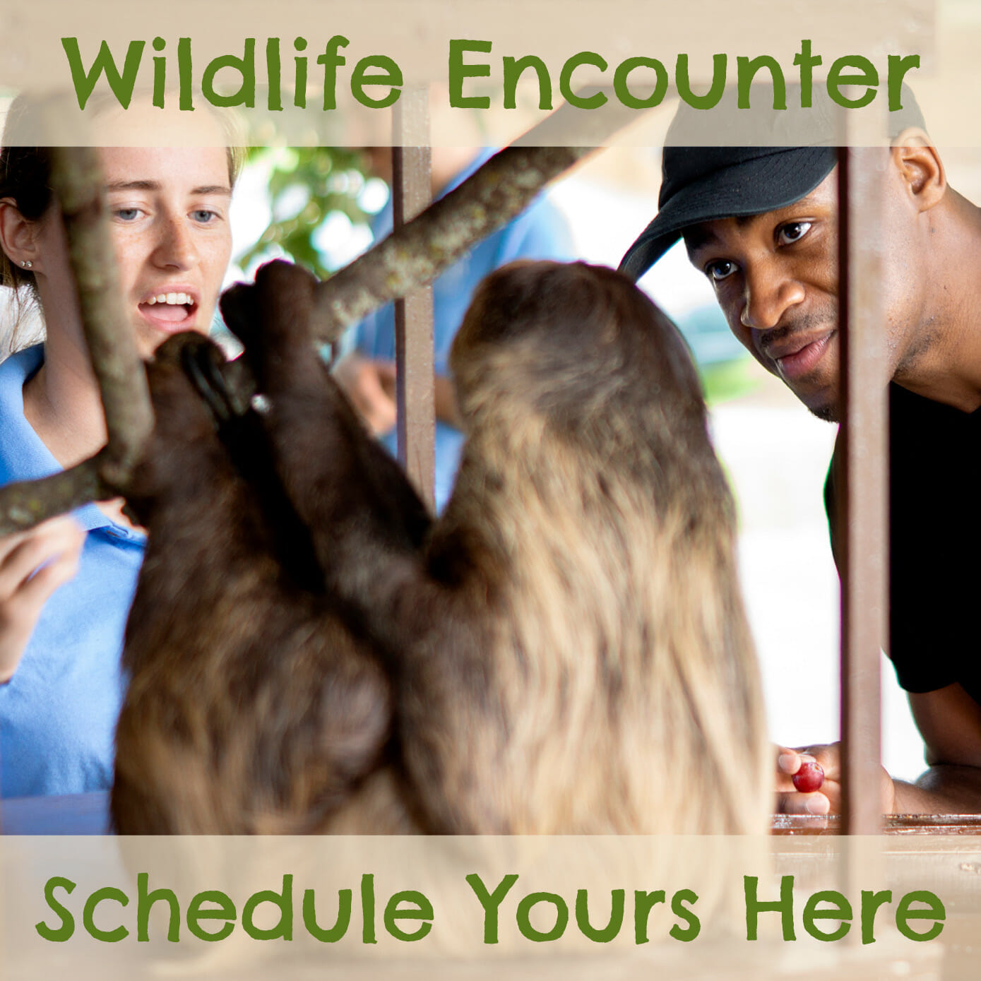have a private wildlife encounter with your favorite ambassador animal