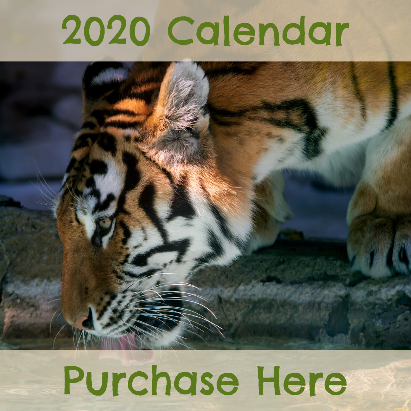 purchase the 2020 conservation calendar