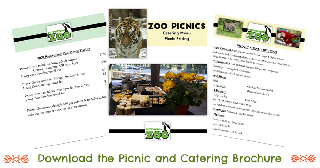 Picnic and Catering Brochure