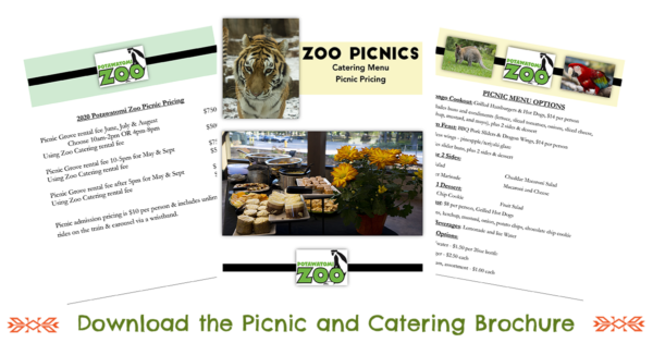 2020 Picnic and Catering Brochure