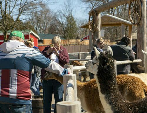 Zoo Delays Start of Season