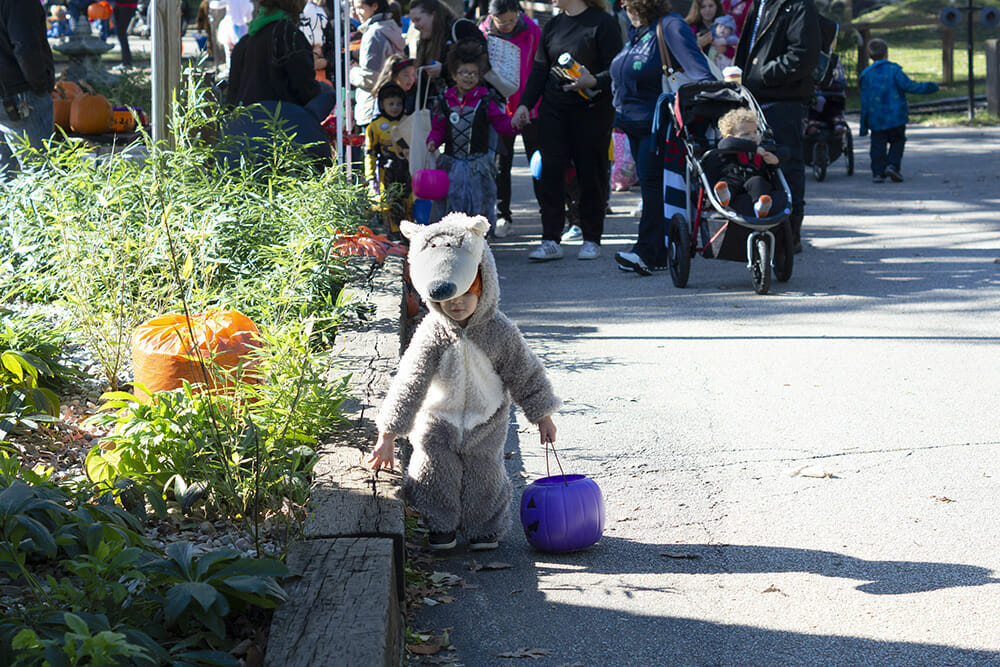 child in wolf costume at zoo boo